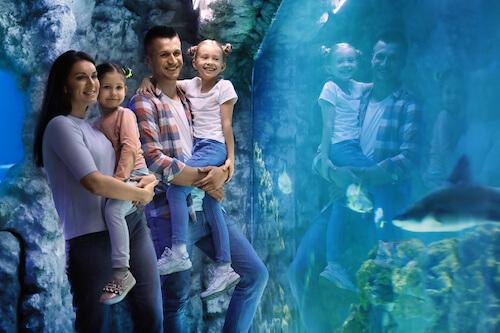 sortie culturelle aquarium